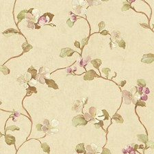 Beige/Light to Dark Purple/White Floral Wallcovering by York