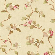 Ecru/Peach/Coral Floral Wallcovering by York