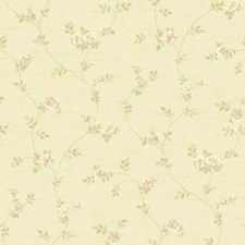 Soft Gold/Cream/Soft to Dark Peach Floral Mini Wallcovering by York