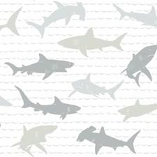 KI0565 Shark Charades by York
