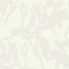 MM1724 Botanical Silhouette by York