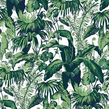 Blanc Tropical Wallcovering by Brunschwig & Fils