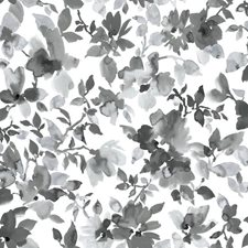 RMK11236WP Watercolor Floral by York