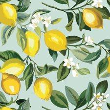 RMK11656WP Lemon Zest by York