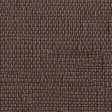 Brown Gold Wallcovering by Innovations