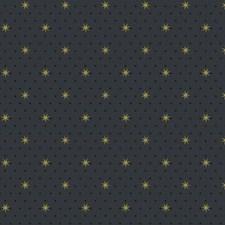 SP1499 Stella Star by York