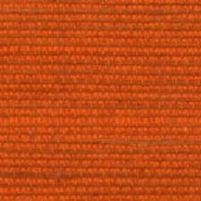 Saffron Wallcovering by Innovations