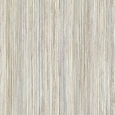 UC3853 Painted Stripe by York