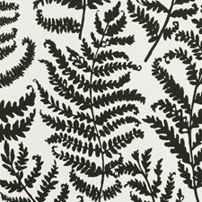 Charcoal Wp Botanical Wallcovering by Clarke & Clarke