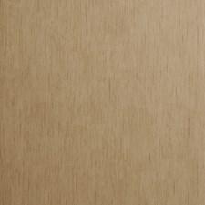 Bamboo Novelty Wallcovering by Clarke & Clarke