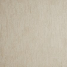 Cream Solid W Wallcovering by Clarke & Clarke