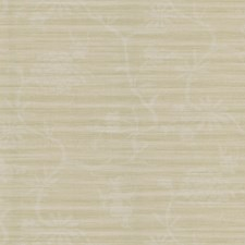 Beige/White Toile Wallcovering by Kravet Wallpaper