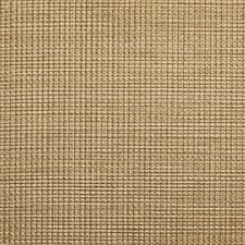 Beige/Camel/Brown Solid Wallcovering by Kravet Wallpaper