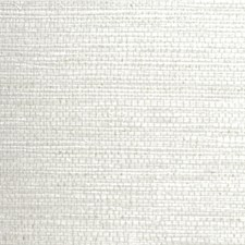 Oysterp Solid Wallcovering by Winfield Thybony