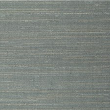 Bayp Solid Wallcovering by Winfield Thybony