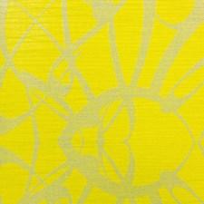 Citrus Wallcovering by Scalamandre Wallpaper
