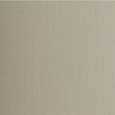 Sesame Solid Wallcovering by Winfield Thybony