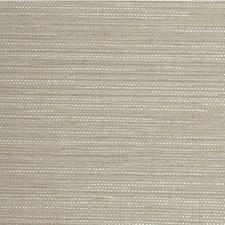 Birch Solid Wallcovering by Winfield Thybony
