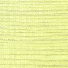Celery Wallcovering by Scalamandre Wallpaper
