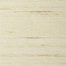 WNT8636 Natural Textiles by Winfield Thybony