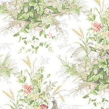 Prairie Wallcovering by Scalamandre Wallpaper