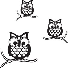 WPK96848 Give A Hoot Wall Art Kit by Brewster