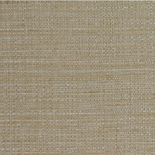 Wheat Texture Wallcovering by Winfield Thybony