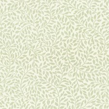 Green Wallcovering by Scalamandre Wallpaper