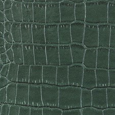 Jungle Wallcovering by Scalamandre Wallpaper