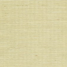 Limeaid Solid Wallcovering by Winfield Thybony