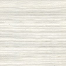 Chalk Solid Wallcovering by Winfield Thybony