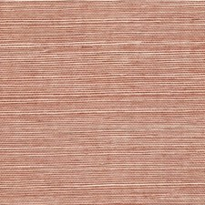 Driftwood Solid Wallcovering by Winfield Thybony