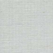 Robins Egg Solid Wallcovering by Winfield Thybony